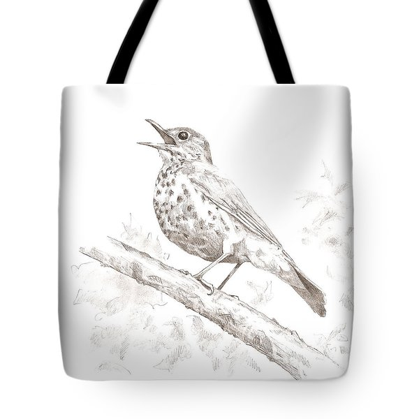 Wood Thrush Tote Bag