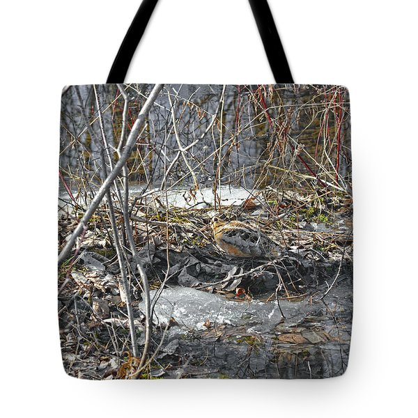 Woodcock's View Of The Forest Tote Bag