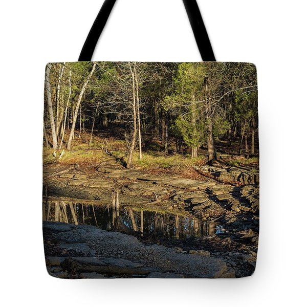 Wooded Backwash Tote Bag