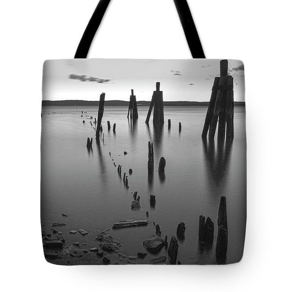 Wooden Soldiers Of The Hudson Monochrome Tote Bag