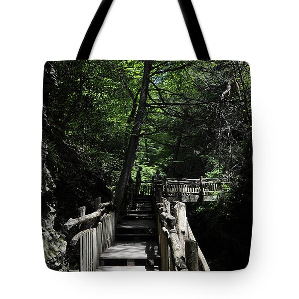Wooden Trails - Three Tote Bag