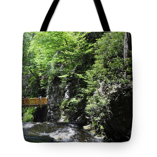 Wooden Trails - Two Tote Bag