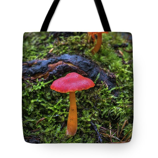 Tote Bag featuring the photograph Woodland Floor Decor by Bill Pevlor