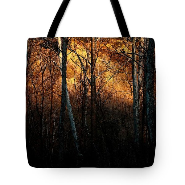 Woodland Illuminated Tote Bag by Bruce Patrick Smith