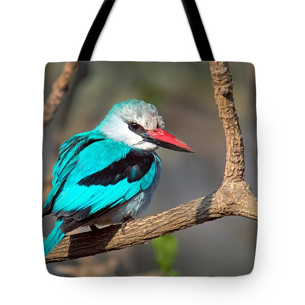 Woodland Kingfisher Halcyon Tote Bag