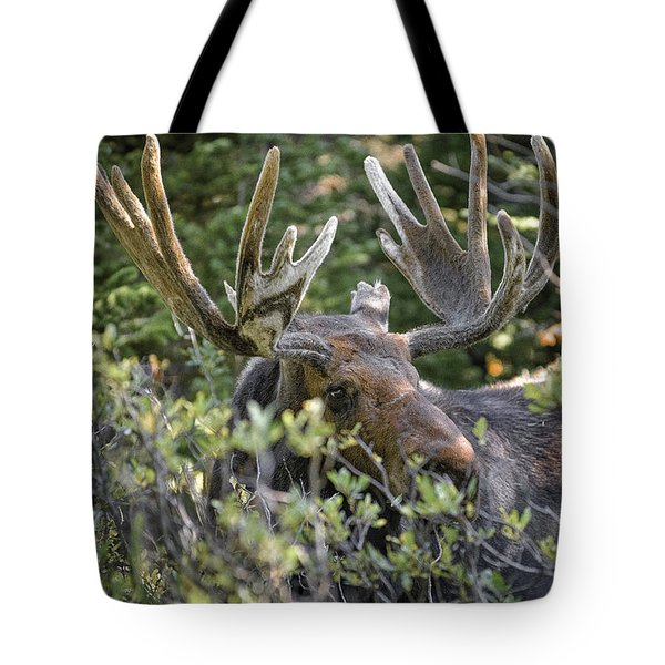 Woodland Moose Tote Bag