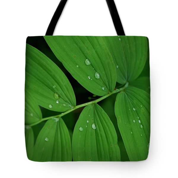 Woodland Rain Tote Bag
