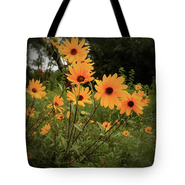 Woodland Sunflower Tote Bag by Scott Kingery