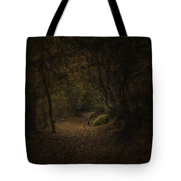Tote Bag featuring the photograph Woodland Walk by Ryan Photography