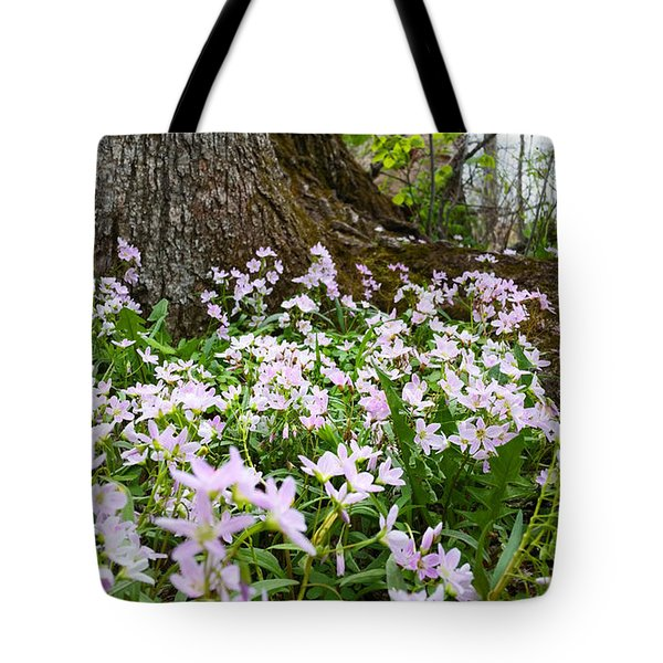 Woodlands Spring Beauty Tote Bag