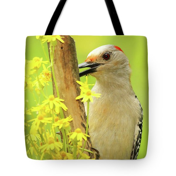 Woodpecker Among Yellow Flowers Tote Bag by Max Allen