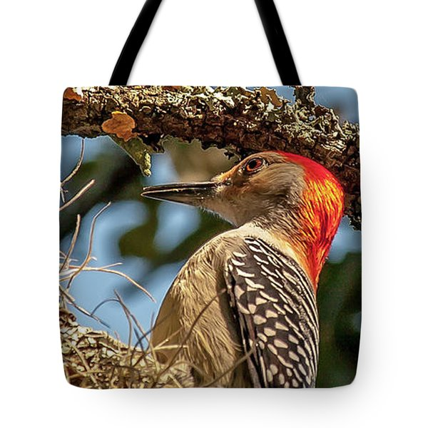 Woodpecker Closeup Tote Bag