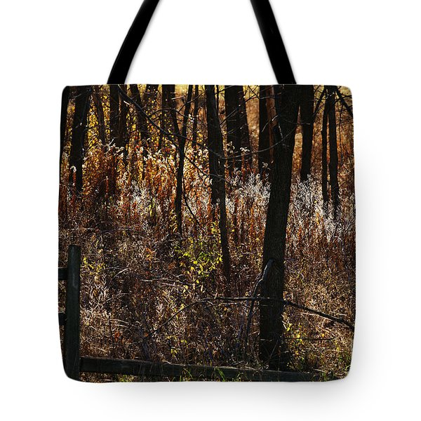 Woods - 2 Tote Bag by Linda Shafer
