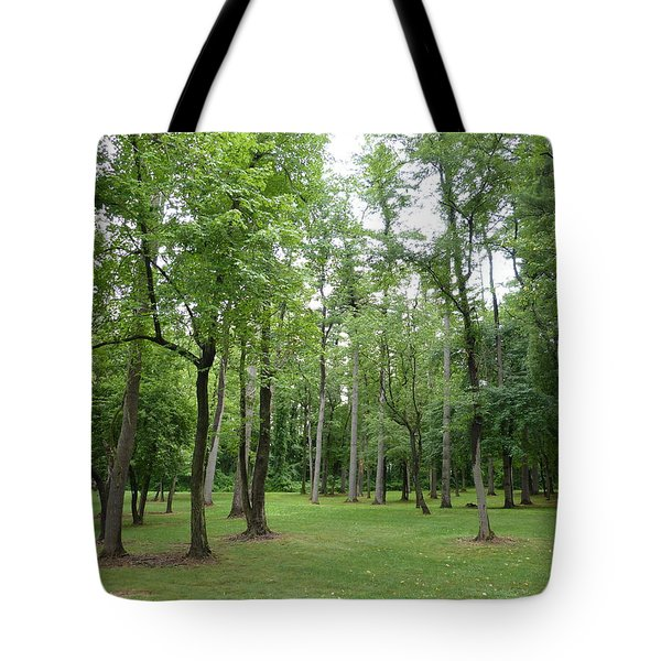 Tote Bag featuring the photograph Woods At Lake Redman by Donald C Morgan