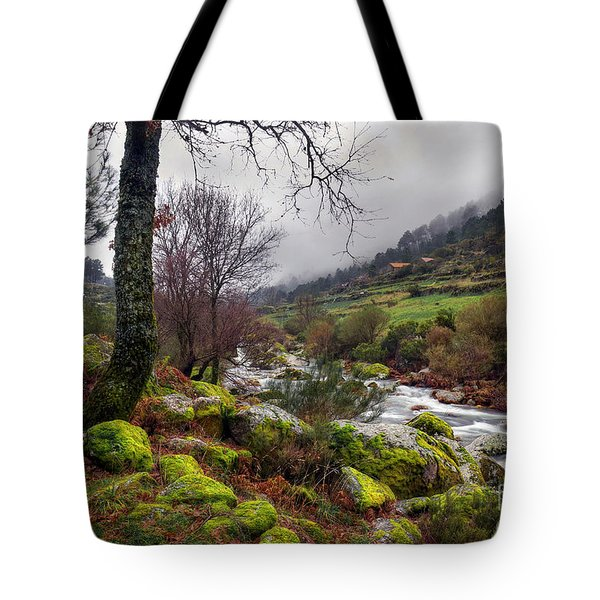 Woods Landscape Tote Bag by Carlos Caetano