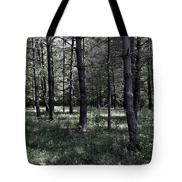 Woods Walk Tote Bag