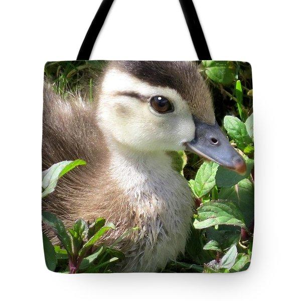 Woody Duckling Tote Bag
