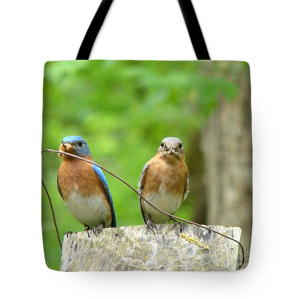 Working Couple Tote Bag by Rand Herron