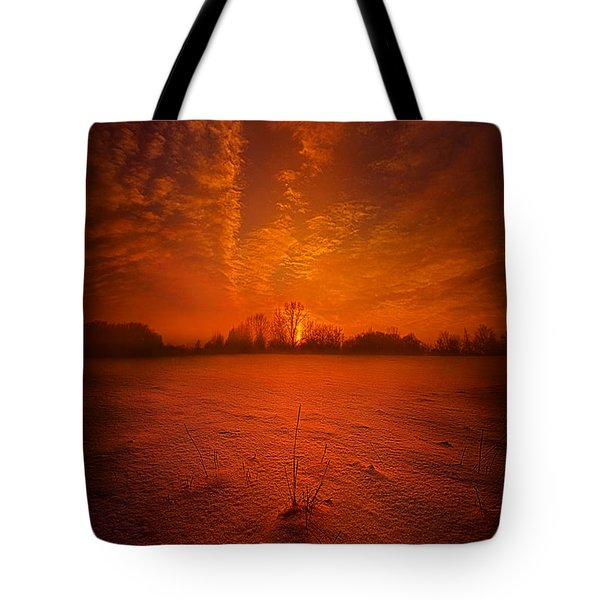 World Without End Tote Bag by Phil Koch