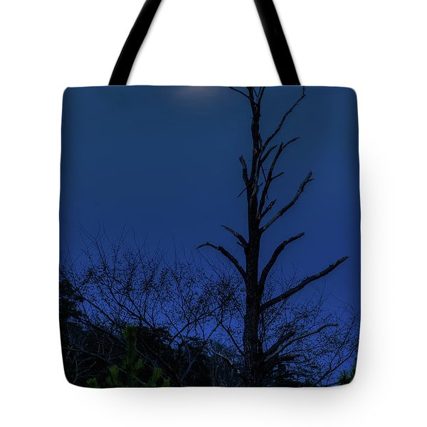 Tote Bag featuring the photograph Worm Moon by Jerry Gammon