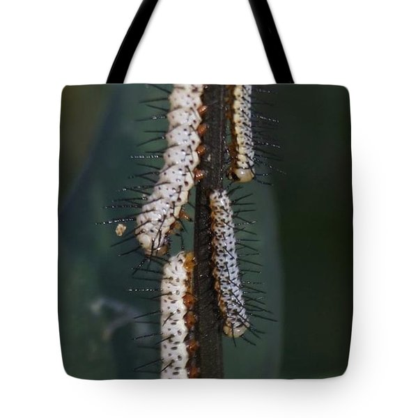 Tote Bag featuring the photograph Worms With No Tequila by Cindy Charles Ouellette