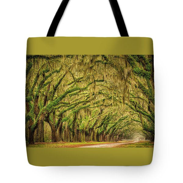 Tote Bag featuring the photograph Wormsloe Drive by Phyllis Peterson