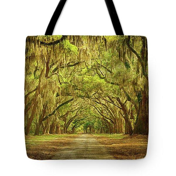 Wormsloe Plantation Oaks Tote Bag