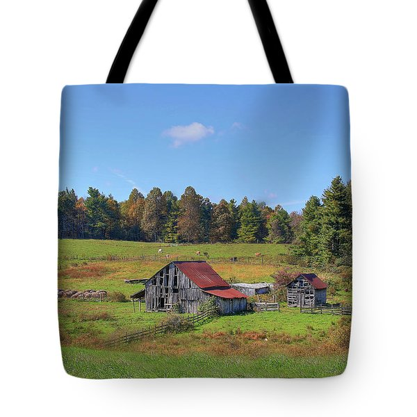 Worn Out Tote Bag by Sharon Batdorf
