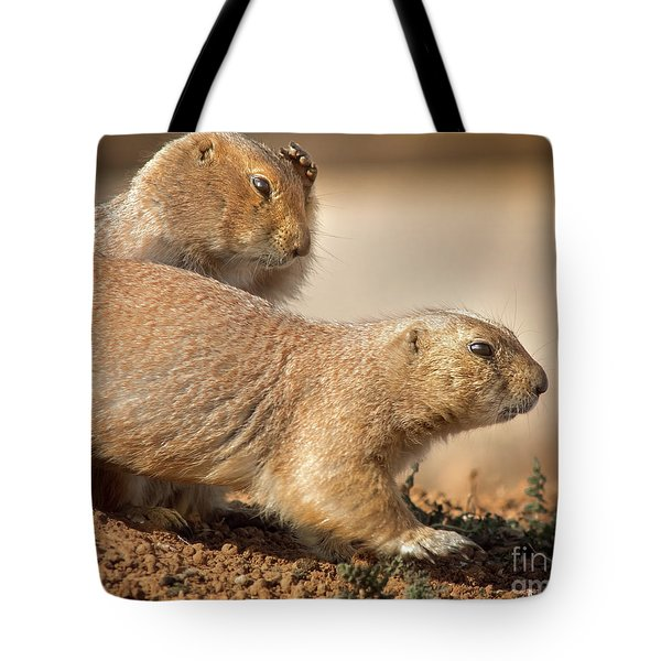 Tote Bag featuring the photograph Worried Prairie Dog by Robert Frederick