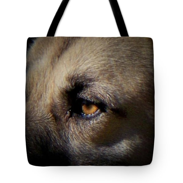 Tote Bag featuring the photograph Wounded by Betty Northcutt