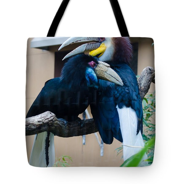 Wreathed Hornbills Tote Bag by Donna Brown