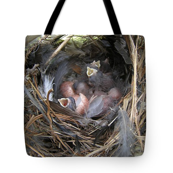 Tote Bag featuring the photograph Wren Babies by Angie Rea