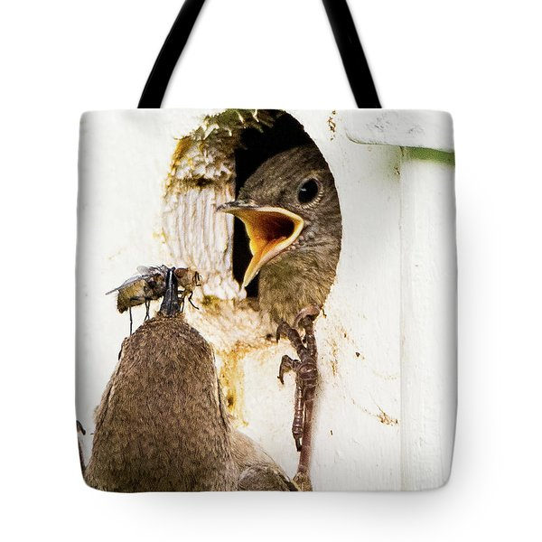 Wren Breakfast Tote Bag