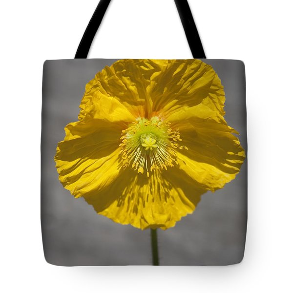 Wrinkled Beauty Tote Bag by Morris  McClung