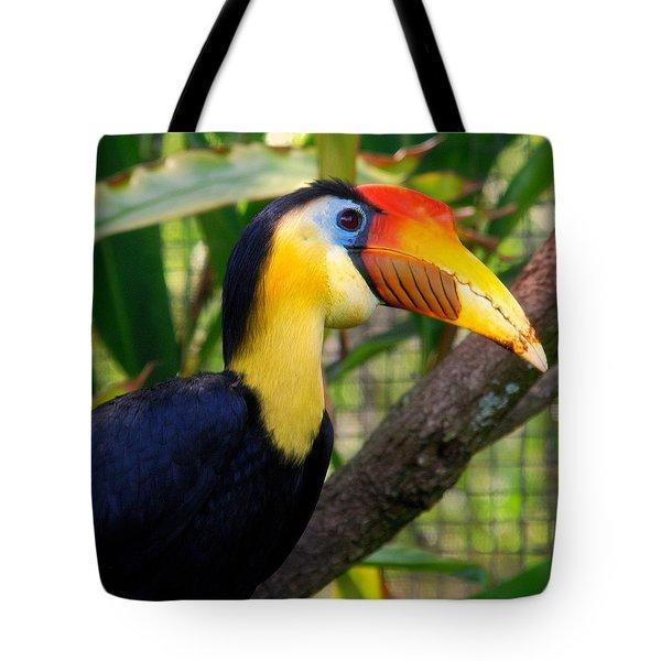 Wrinkled Hornbill Tote Bag by Susanne Van Hulst