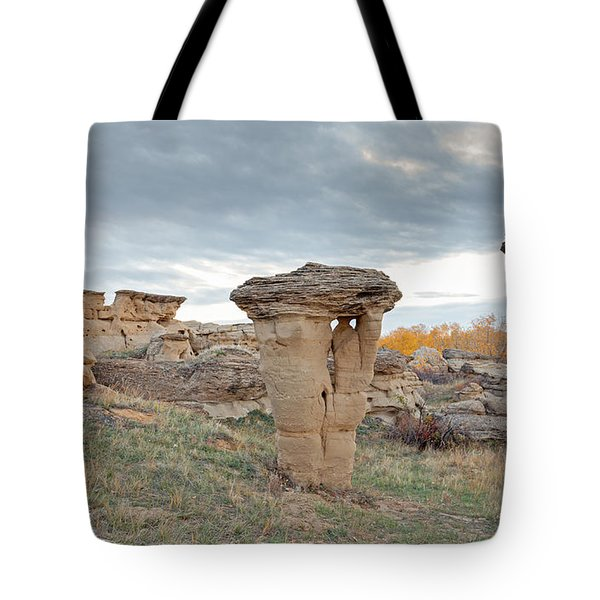 Tote Bag featuring the photograph Writing On Stone Park by Fran Riley