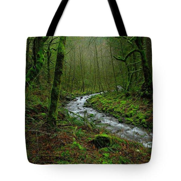 Wyeth Creek In Early Spring Tote Bag