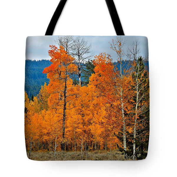 Wyoming 009 Tote Bag