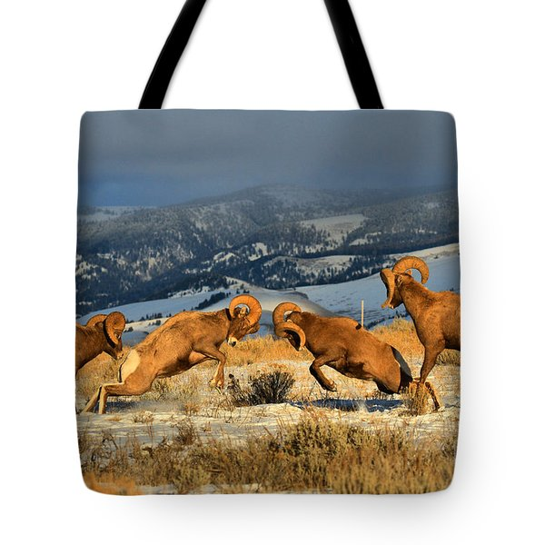 Wyoming Bighorn Brawlers Tote Bag