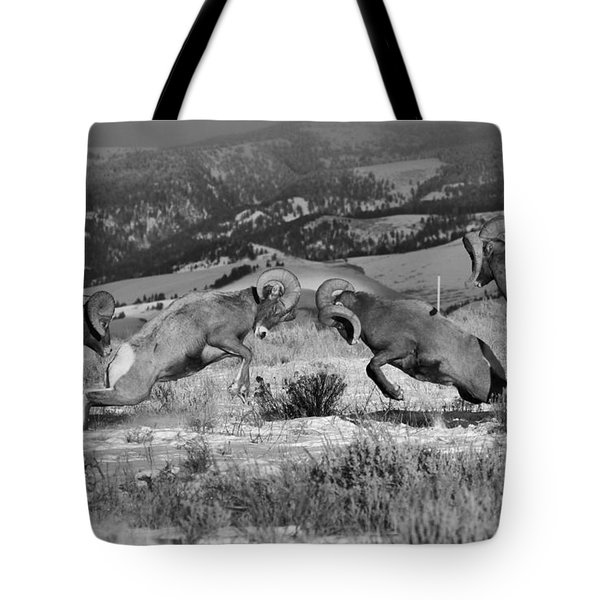 Wyoming Bighorn Brawlers Crop Black And White Tote Bag