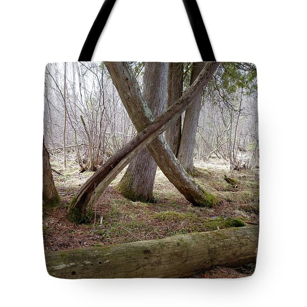 X Marks The Spot Tote Bag by Sandra Updyke