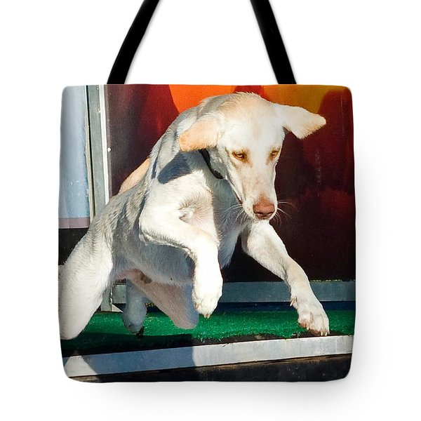 Tote Bag featuring the photograph X-treme Airdogs 3 by Tyra OBryant
