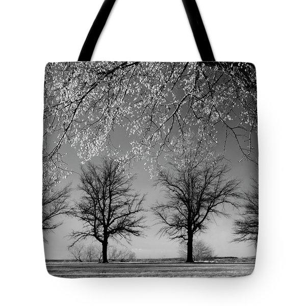 x4 Tote Bag