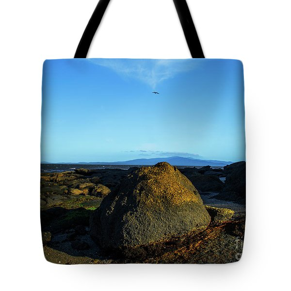 Tote Bag featuring the photograph Yanakie Rocks by Angela DeFrias