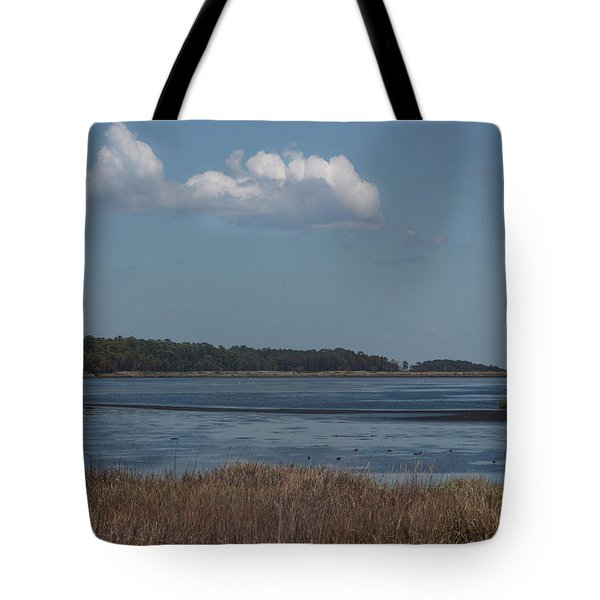 Yawkey Wildlife Reguge - View From The Causeway Tote Bag by Suzanne Gaff