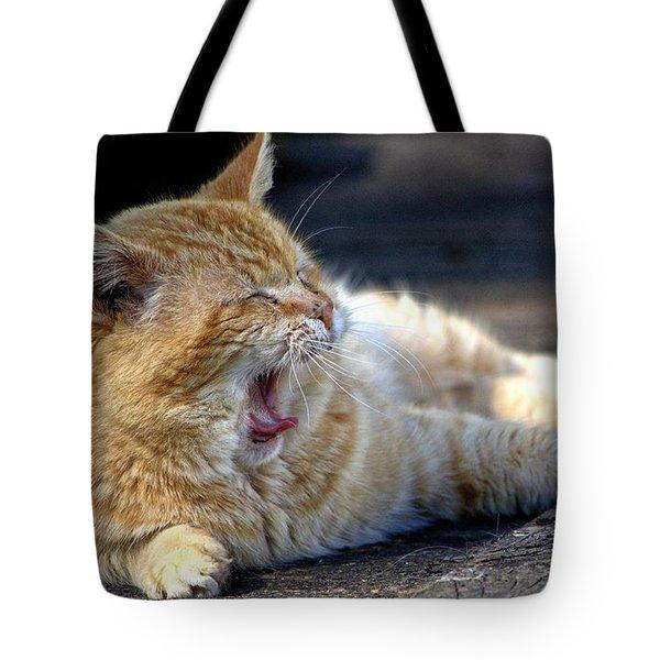 Yawning Tote Bag