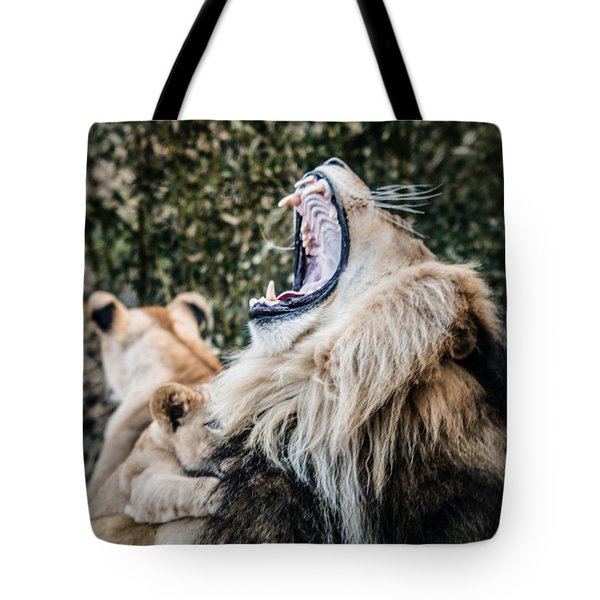 Tote Bag featuring the photograph Yawning Lion by Cathy Donohoue