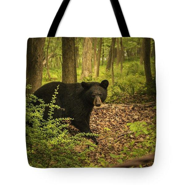 Yearling Black Bear Tote Bag