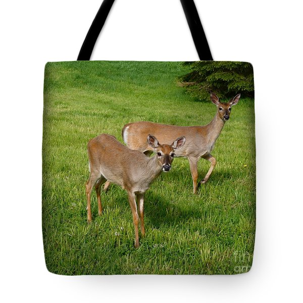 Tote Bag featuring the photograph Yearling Twins by Sandra Updyke