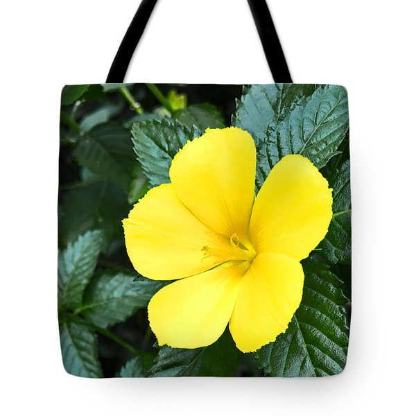 Yellow Alder Flower Tote Bag